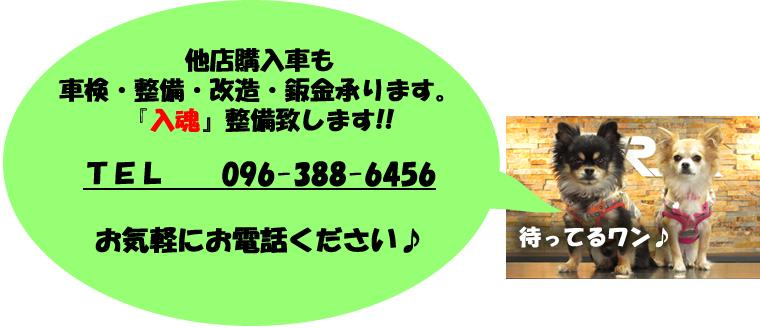 PARTY入魂の自信作☆その目でお確かめ下さい!!