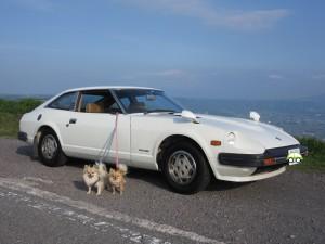 L型 旧車 S30 S130 S31 ハコスカ ケンメリ